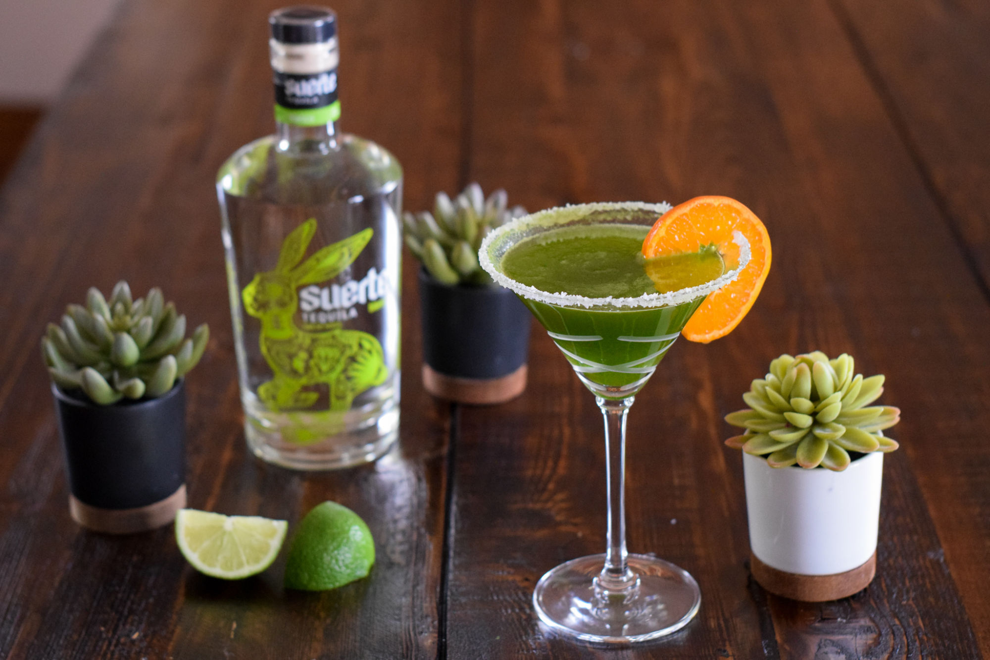 green cilantro margarita with suerte tequila and succulents on dark brown wooden table
